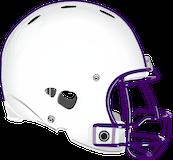 Coudersport Falcons logo