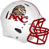 Academy of the New Church Lions logo