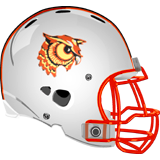 Bradford Area Owls logo