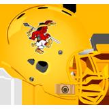 Carrick Raiders logo
