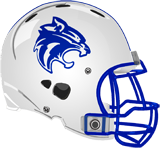 Central Mountain Wildcats logo