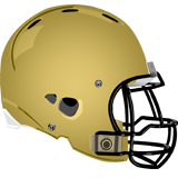 Delone Catholic Squires logo