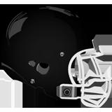Samuel S. Fels Panthers logo