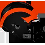 Hanover Nighthawks logo