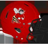 Honesdale Hornets logo