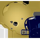 Lower Moreland Lions logo