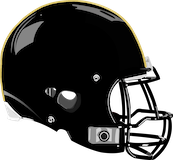 Mahanoy Area Golden Bears logo