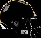 Mahanoy Area Golden Bears logo