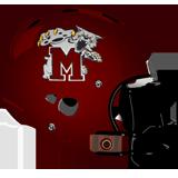 Mechanicsburg Wildcats logo