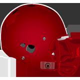 Mount Carmel Area Red Tornadoes logo