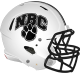 Northern Bedford Panthers logo