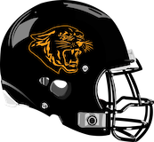 Panther Valley Panthers logo