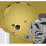West Chester Rustin Golden Knights logo
