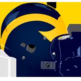 Saegertown Panthers logo