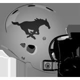 South Western Mustangs logo