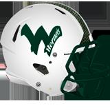 Wellsboro Hornets logo